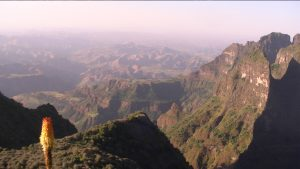 Tour Packages: Bale Mountain Trekking